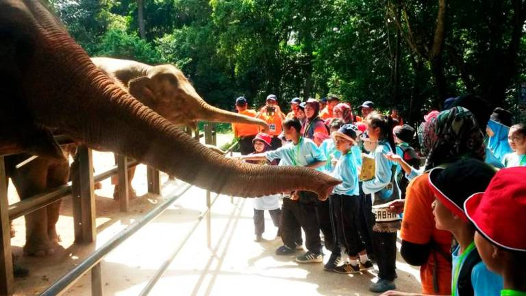 MPHTJ teams up with private firms to upgrade Melaka Zoo