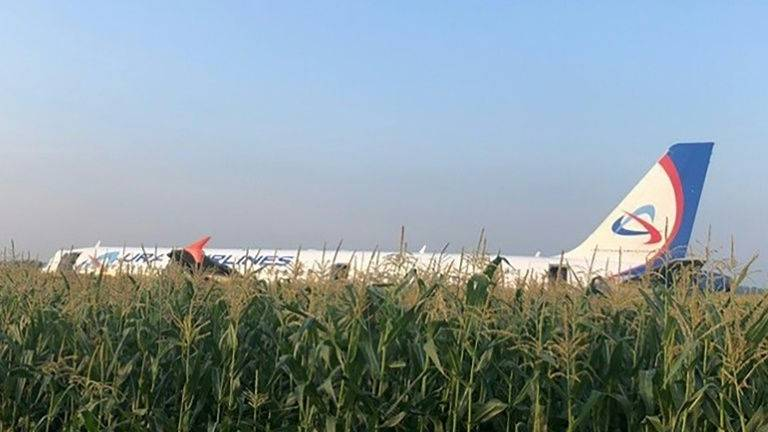 Russian Airbus makes emergency landing in corn field