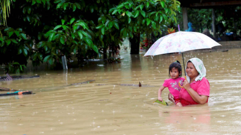 Terengganu floods: Number of victims rises to 1,479