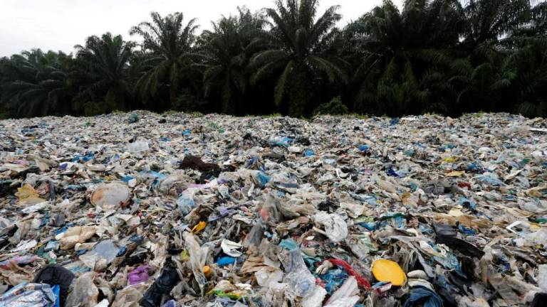 Plastic pollution: What can you do to help?