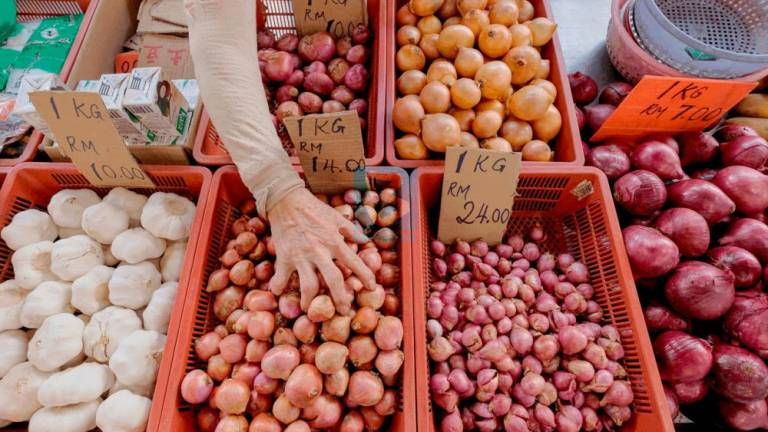 KPDNHEP urged to investigate red onion price hikes