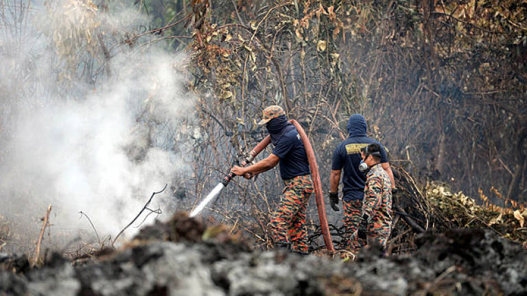 Haze: Perak fire dept monitors areas at risk of burning