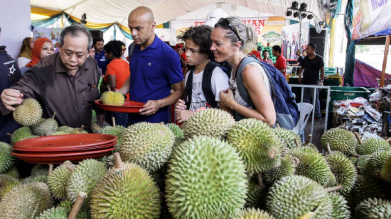 No durian dumping in country so far: Fama