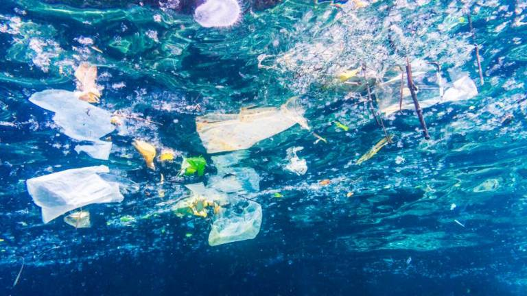 Procter & Gamble takes the lead in tackling ocean plastic