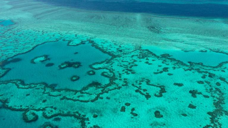 Australia approves vast coal mine near Great Barrier Reef
