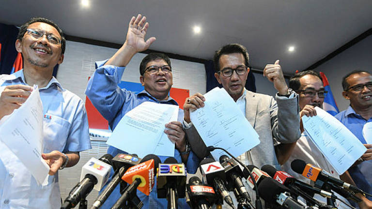 Chairmen of five PKR state councils, FT council express support for Anwar