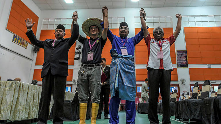 Cameron Highlands by-election sees candidates of various races