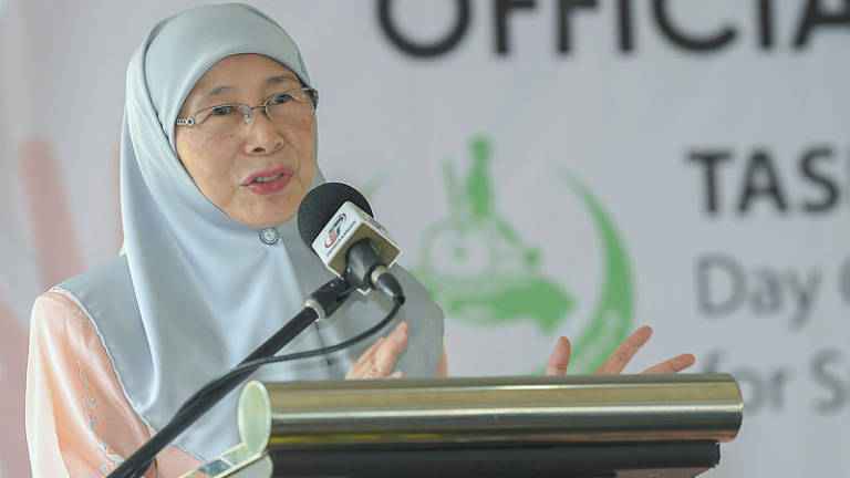 Govt only promotes own products: Wan Azizah