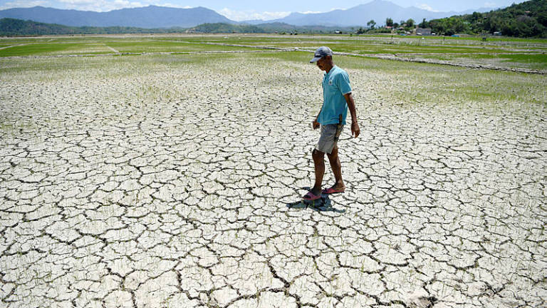 Hot weather normal, don't panic, says Met Dept