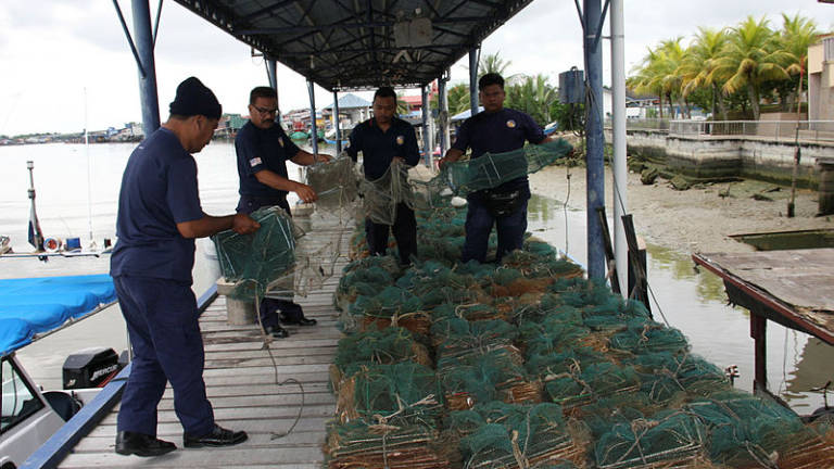 MMEA seizes 13 'Bubu Naga' fish traps in Tanjung Dawai waters