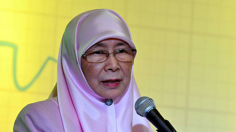 Salleh's application shows PKR's appeal, says Wan Azizah