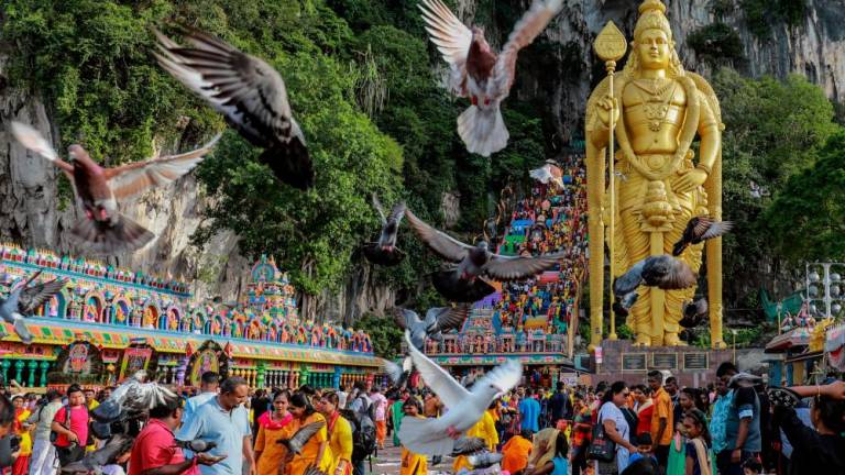 Malaysian Hindu devotees perform their religious rites while walking towards to the temple to make offerings during the Thaipusam festival at Batu Caves outskirts of Kuala Lumpur. AMIRUL SYAFIQ MOHD DIN / THESUN
