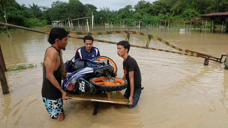 Malacca floods: Number of victims increases to 745