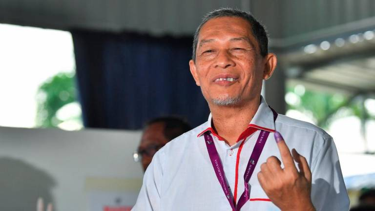 Tg Piai by-election: Karmaine promises to soldier on