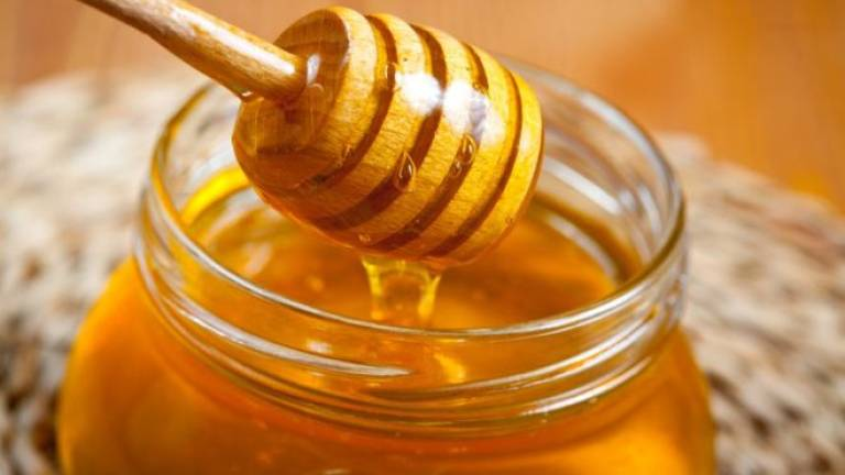 Reinventing 'kelulut' honey to help poor communities