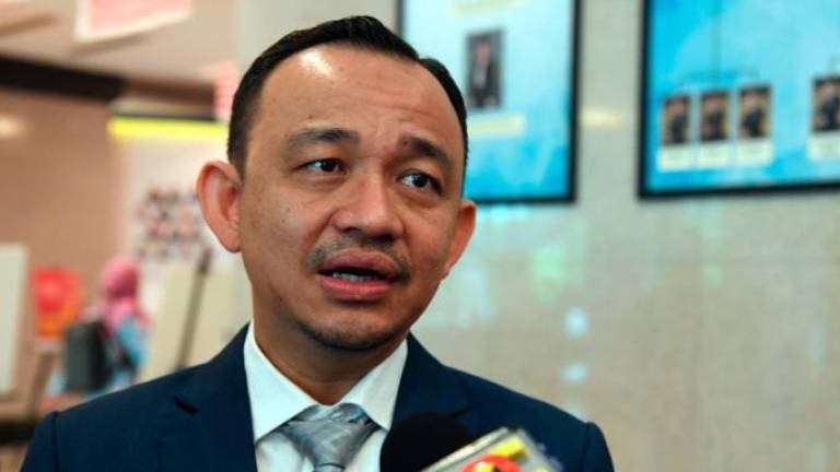 Unfair to blame PH, Maszlee told Tg Piai voters