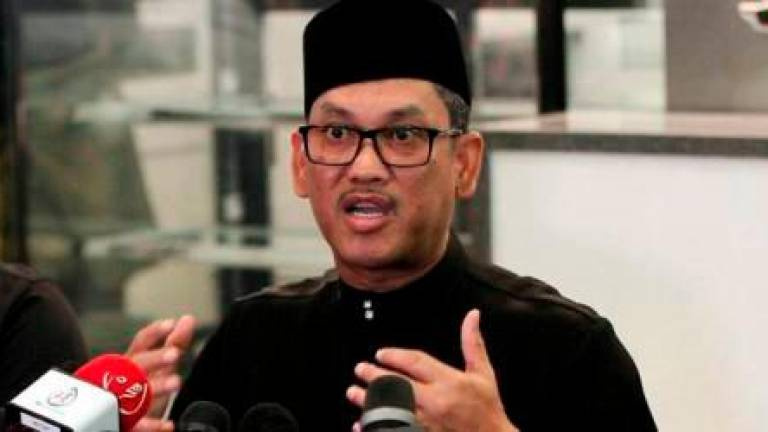 Tun M doesn't need to form new party: Bersatu Deputy President