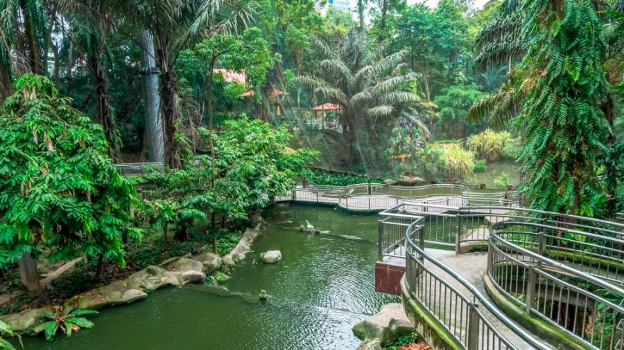 The KL Bird Park provides a cool and enjoyable respite from the heat