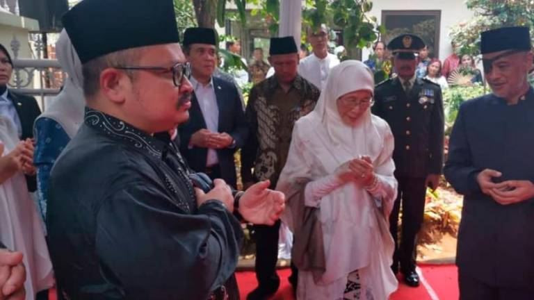 Wan Azizah meets Jokowi to convey condolences to Indonesia