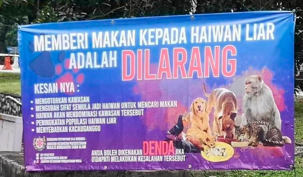 MBSA explains 'Do not feed animals' campaign