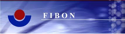 Fibon to explore financing solutions for car trading platform users