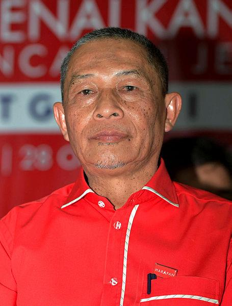 PPBM Tanjung Piai division chief Karmaine Sardini. — Bernama
