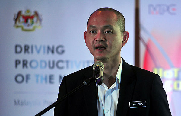 Investment promotion agencies to be streamlined: Ong