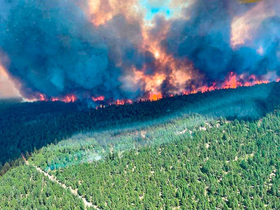 Smoke and flames are seen during the Sparks Lake wildfire at Thompson-Nicola Regional District, British Columbia, Canada, June 29, 2021, in this image obtained via social media. -BC wildfire service via Reuters