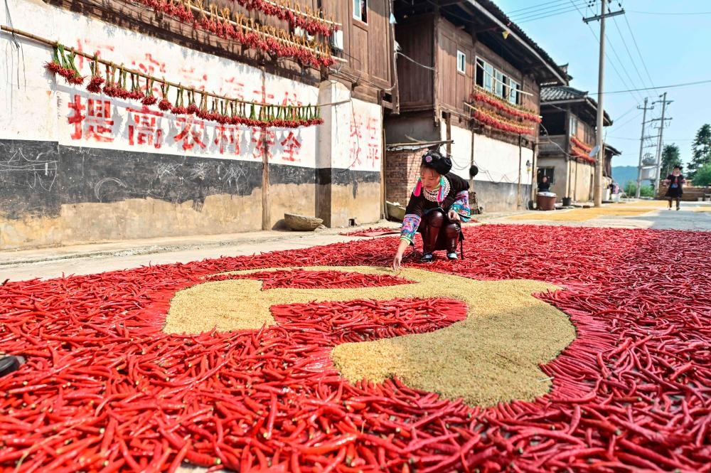 This photo taken on September 12, 2021 shows a farmer creating a flag of the Chinese Communist Party with corns and red peppers as farmers dry their harvested products in Congjiang in China's southwestern Guizhou province. AFPpix