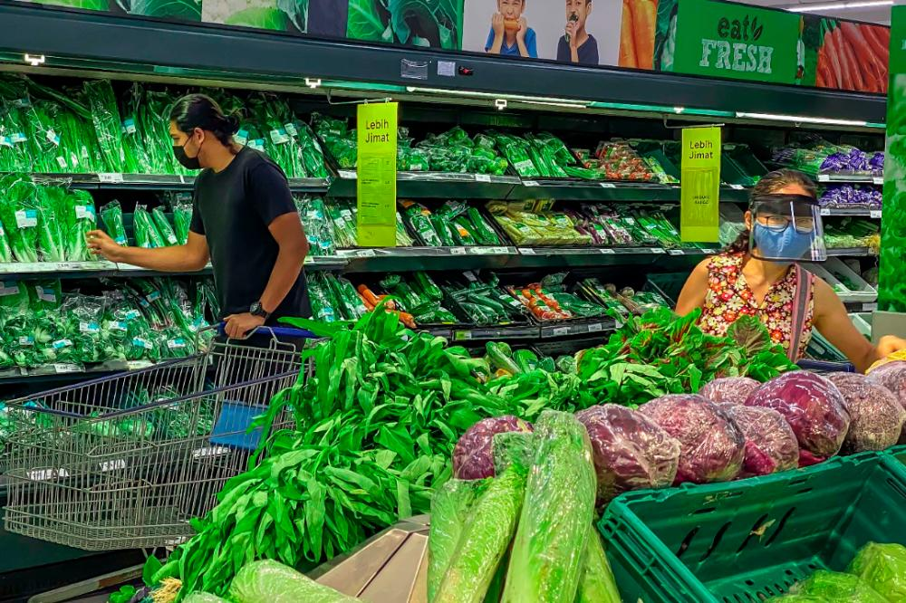 Strengthen supply chain and raise domestic production to secure food supply, govt advised